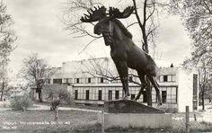 Viipuri ennen ja nyt - kuvat kertovat, kuinka kaupunki on muuttunut Real People, Finland, Nostalgia, Moose Art, Batman, War, Horses, Travel, Animals