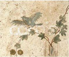 Candida Martinellis Italophile Site(Vesuvius and Pompeii)