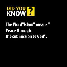 Taqwa | Islamic Quotes