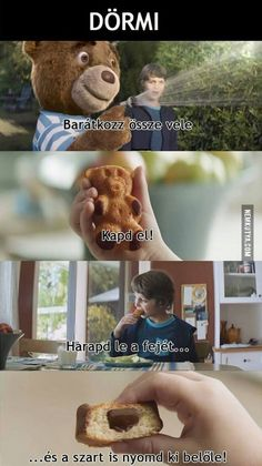 Szerencsétlen medve :D