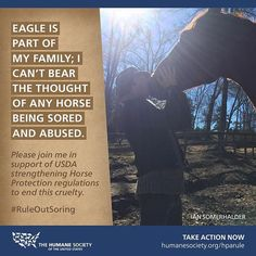 Please join me in ending the intentional infliction of pain to horses legs and hooves! #RuleOutSoring Take action at humanesociety.org/hparule  Thank you!!!