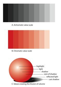 (B) Chromatic value scale. A spectrum of dark and light exists within colors as well. (C) Creating volume through value. The illusion of depth can be . Value Drawing, Drawing Lessons, Drawing Tips, Art Lessons, Elements And Principles, Elements Of Art, Value In Art, Art Worksheets, Color Studies