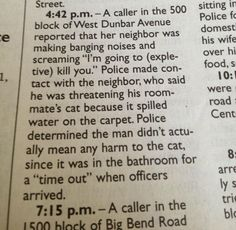 Sounds like illegal incarceration to me. Everyone deserves their day in court. Even naughty cats. | 18 Local News Stories That Could Only Happen In A Small Town