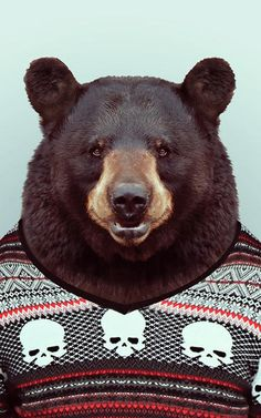 "Animals In ""Zoo Portraits"" 