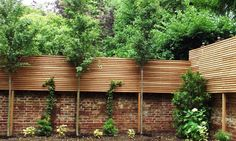 Hardwood slatted screening and half brick wall. And lollipop trees…! Garden Privacy, Backyard Privacy, Backyard Fences, Garden Trellis, Garden Fencing, Farm Fence, Pool Fence, Slatted Fence Panels, Brick Wall Gardens