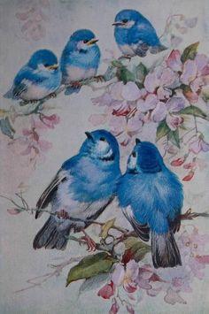 Blue Bird of Happiness von Julie auf Etsy - Mal anleitung - Birds Love Birds, Beautiful Birds, Vintage Bird Illustration, Bird Cards, Vintage Birds, Etsy Vintage, Bird Drawings, Bird Pictures, Decoupage Paper
