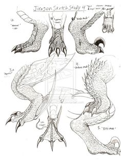 Wie zeichnet man Dragon Claws Jiragon Arm und Klaue Skizzen - New Sites Drawing Techniques, Drawing Tips, Drawing Sketches, Drawing Lessons, Drawing Ideas, Fantasy Creatures, Mythical Creatures, Animal Drawings, Art Drawings
