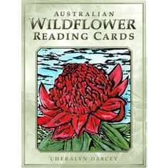 AUSTRALIAN WILDFLOWER READING CARDS SET