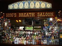 List of the Best Bars and Watering Holes in Key West, Florida. Florida Keys Camping, Florida Travel, Florida Trips, Florida Beaches, Key West Beaches, Key West Vacations, Key West Bars, Famous Bar, Bar Key