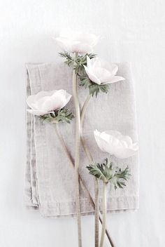 linen and white flowers//
