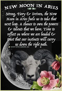 new moon, symbolism, mystic, witch, wicca, book of shadows, goddess, luna, spells, blessings, prayers, chants, ASTROLOGY, Aries, Ram, driven, strong willed, enchanted, psychic, metaphysical, shaman, blessed be.  www.whitewitchparlour.com