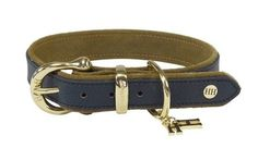 dog collar blue Happy House, Belt, Lifestyle, Dogs, Accessories, Fashion, Waist Belts, Fashion Styles, Doggies