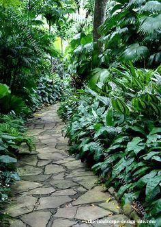 Nice path in tropical garden Tropical Garden Design, Tropical Landscaping, Backyard Landscaping, Tropical Gardens, Savannah Gardens, Balinese Garden, Garden Entrance, Shade Garden, Garden Paths