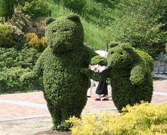「公園 花」の画像検索結果