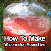 How to Make Watermelon Moonshine