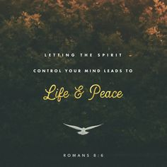 For to set the mind on the flesh is death, but to set the mind on the Spirit is life and peace. For the mind that is set on the flesh is hostile to God, for it does not submit to God's law; indeed, it cannot. Those who are in the flesh cannot please God. Romans 8:6-8 ESV