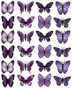 24X MEDIUM PURPLE BUTTERFLY EDIBLE CUP CAKE TOPPERS PARTY WEDDING DECORATION M18 | eBay