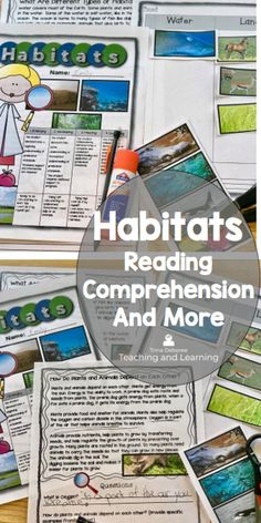 220 Best Habitat Projects And Activities Images In 2019 Teaching