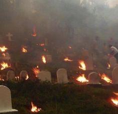 the dead burn