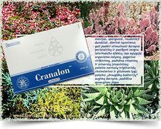Cranalon™ 14 pakelių - maisto papildas Santegra JAV. Cranalon™ - multivitamininė gaivinančio gėrimo formulė, pasižyminti valančiu ir energizuojančiu efektu. Į Cranalon™ sudėtį įeina Fibersol 2™ - pats turtingiausias tirpios dietinės ląstelienos šaltinis.