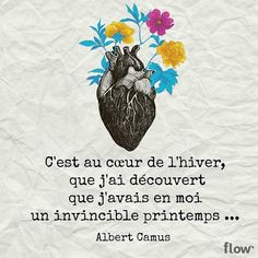 Albert Camus, Pretty Words, Cool Words, Positive Attitude, Positive Quotes, Mantra, Words Quotes, Me Quotes, Great Quotes