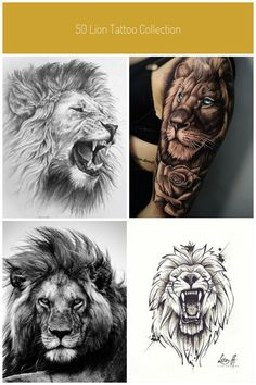50 Lion Tattoo Collection part2 #Uncategorized #lion tatto desing Security Check Required