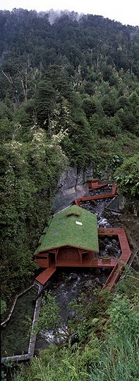 Hot Springs, Villarrica National Park, Chile  One of my favorite places in the world :)