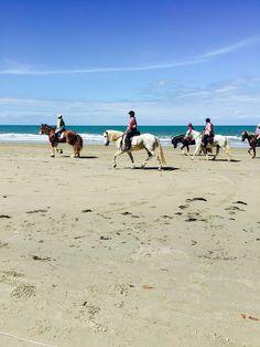 Horse racing on four mile beach Port Douglas