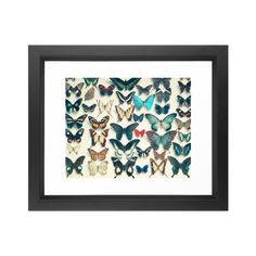 """Bring the magic of butterflies into your room with this pretty art print. This gallery-quality giclée print is made to last on high-quality archival paper, and comes custom trimmed with a 1"""" border for...  Find the Rainbow of Butterflies Art Print, as seen in the #Elegant-Entomology Collection at http://dotandbo.com/collections/elegant-entomology?utm_source=pinterest&utm_medium=organic&db_sku=104171"""