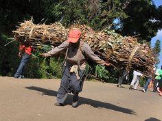 Fuel-wood carrier