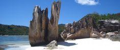 Seyşeller / Curieuse #seyşeller #seychelles #travel #seyahat #curieuse