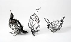 """Wire drawing, """"Studies of Guillmots"""", Celia Smith, 2011"""