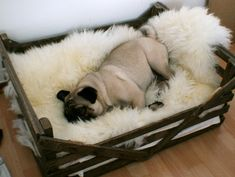 Use a old crate as a bed