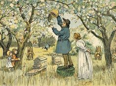 ≗ The Bee's Reverie ≗ vintage beekeeper illustration