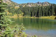 Sheep Lake lures you to pause and enjoy nature. Photo by Patricia Coulthard.