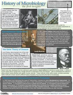 History of Microbiology- Anton van Leeuwenhoek, Louis Pasteur, Robert Koch - Biology 101 Free Biology Study Guides