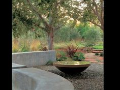 Learn how to embrace your garden's curves and quirks with these striking landscaping ideas.