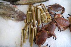 Fish-from-Scottish-Waters-Fresh-Fish-Eddie's-Seafood-Market Read 'Fish from Scottish Waters' at www.redbookrecipes.com
