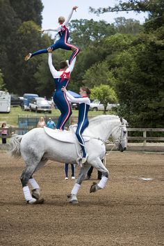 equestrian vaulting | vaulting # horses # equestrian # vaulting spam timez are nao