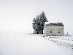Yup, that's the ranch in winter! I Love Winter, Winter Is Coming, Winter Snow, Winter Time, Winter Christmas, Winter's Tale, Winter Beauty, Its Cold Outside, The Ranch