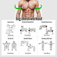 Incline Bench: 145 Fly Bench   Dumbell Fly: 30   Dumbell Bench Press: 60   Pec Dec Fly: 70, 90, 110   Dumbell Pullover: 60   Standing Cable Flyes: 27.5, 32.5   Go up by 5 to 15 depending on exercise every workout.