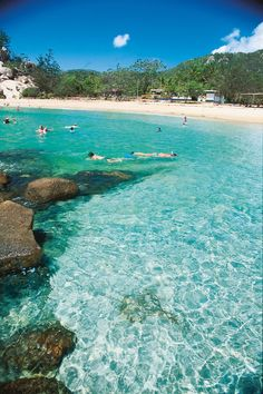 Snorkelling at Alma Bay - Magnetic Island, Queensland, Australia. Image credit : Tourism Queensland.