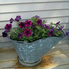 Old coal bucket as planter… – Modern Design - Modern Garden Junk, Garden Yard Ideas, Garden Projects, Garden Art, Garden Design, Garden Pallet, Big Garden, Easy Garden, Backyard Ideas