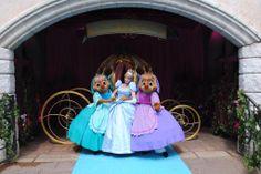 #Disneyland Paris. Suzy, Perla and Cinderella in front of Cinderella's Pumpkin gold Carriage outside Restaurant L'Auberge de Cendrillon in Fantasyland #DLRP #DLP #Disney