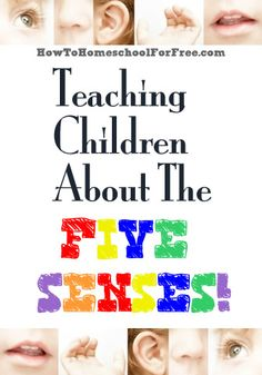 Teaching #Children About The Five Senses - #FREE #Homeschool Resources from www.howtohomeschoolforfree.com