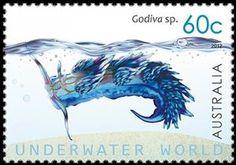 Nudibranch (Godiva sp.)