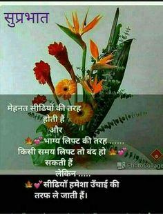 Good Night Hindi, Hindi Good Morning Quotes, Morning Prayer Quotes, Morning Inspirational Quotes, Good Morning Messages, Morning Prayers, Beautiful Morning Pictures, Good Morning Images Download