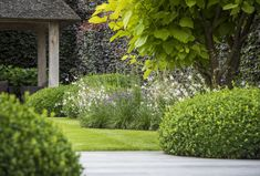 Garden design with softer round garden beds for the grass area and onto the patio, veranda terrace! Topiary Garden, Garden Pool, Garden Landscaping, Garden Beds, Outdoor Plants, Outdoor Gardens, Backyard Ideas For Small Yards, Backyard Designs, Formal Gardens