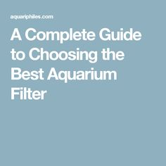 A Complete Guide to Choosing the Best Aquarium Filter