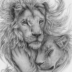 Lion art Lion And Lioness Tattoo, Lion Thigh Tattoo, Lion Shoulder Tattoo, Bad Tattoos, Tatoos, Future Tattoos, Body Art Tattoos, Rib Cage, Cool Tats